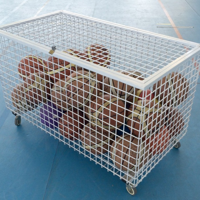 Metal ball-carrying cage with welded wire mesh