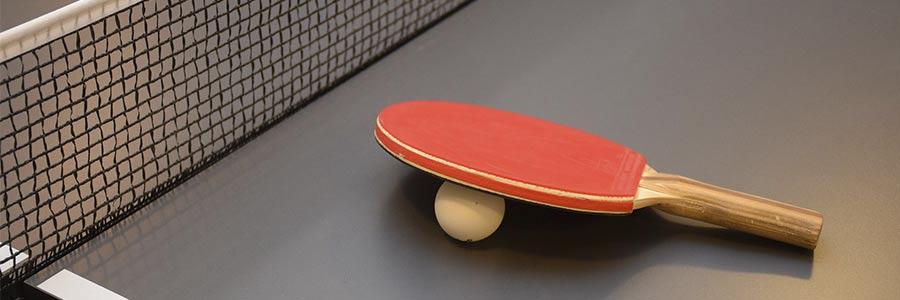 mesa y pala ping pong