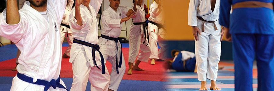 artes marciales judo karate
